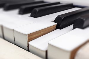 Close-up of some piano keys