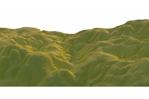 Green grass hills lit by warm