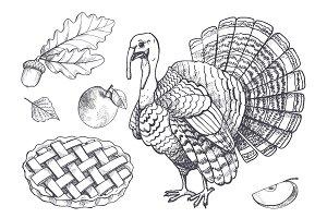 Bird Turkey and Baked Pie Apple Set