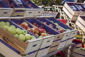 Apples at market.