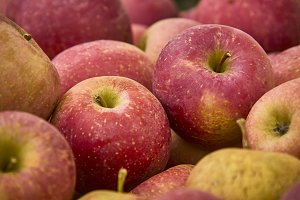Red apples with nuances