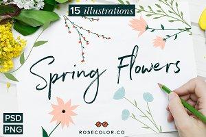 Spring Flower Illustrations