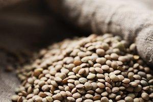 Raw healthy brown lentil