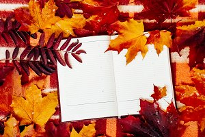 empty notebook open, a lot of autumn