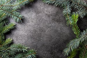 Pine tree branches on dark texture s