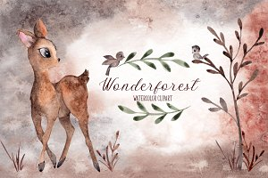 Wonderforest. Watercolor hand draw
