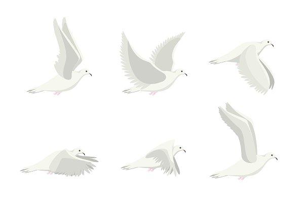 Cartoon Dove Bird Set. Vector