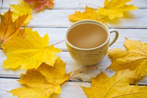 Coffee cup with autumn leaves