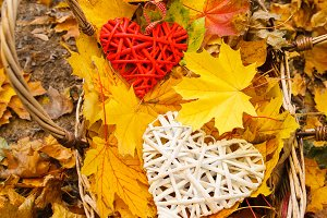 Heart on autumn leaves
