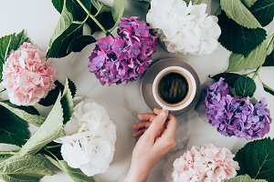 flat lay with hortensia flowers and