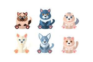Different cute cats set, cartoon