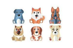 Cute dogs of different breeds set