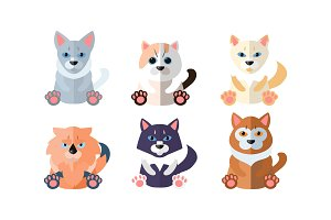 Cute cats set, cartoon animals pets