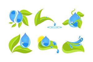 Green leaves and water drops set