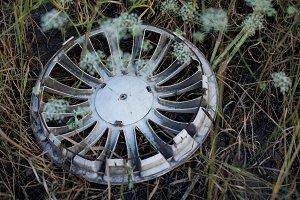 Car wheel cap in the grass