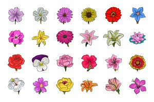 Floral Hand Drawn Colored Icons