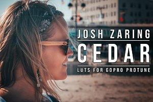 GoPro PROTUNE | CEDAR LUT PACK