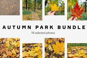 Autumn park bundle