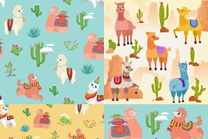 Cute alpaca lama collection