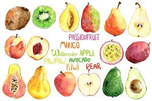 Vector bright watercolor fruits