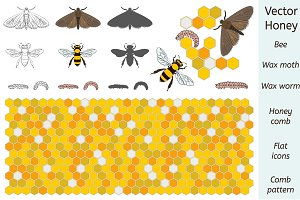 Bee / Wax Moth / Worm / Comb Vector