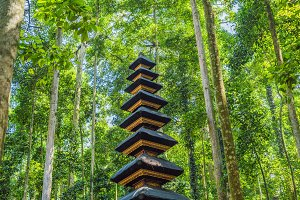 Temple in the Monkey Forest in Ubud