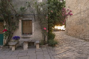 Roses and flowers in medieval town
