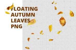 Floating autumn leaves PNG