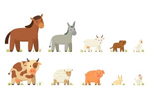 Farm Animals Illustration Set