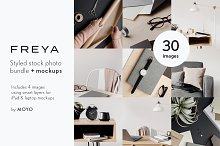 Freya Stock Photo & Mockup Bundle by  in Business
