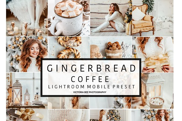 Mobile Lightroom Preset GINGERBREAD