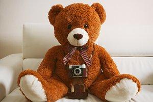 Teddy bear with vintage 35mm camera