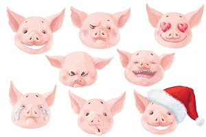 Symbol 2019. Adorable emotional pigs