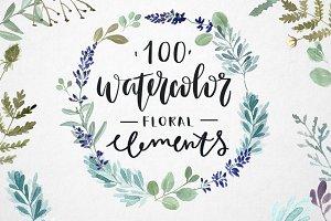 100 watercolor herbal elements.
