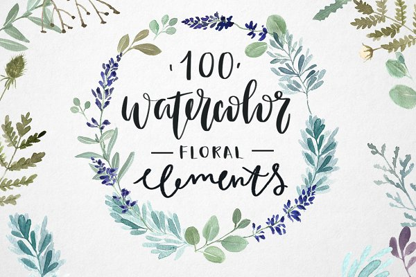 100 watercolor herbal elements.