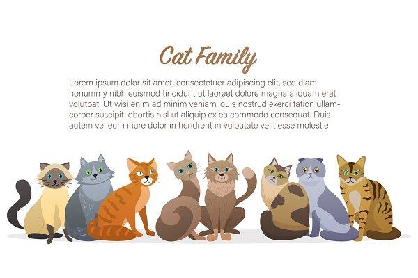 Cute Cartoon Cats Family Pre Designed Vector Graphics Creative Market