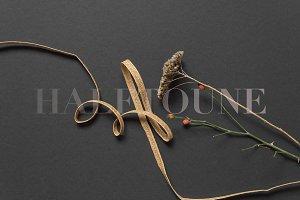 Botanical Styled Stock Image