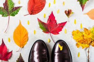 Lace Up Brogues with Autumn Leaves