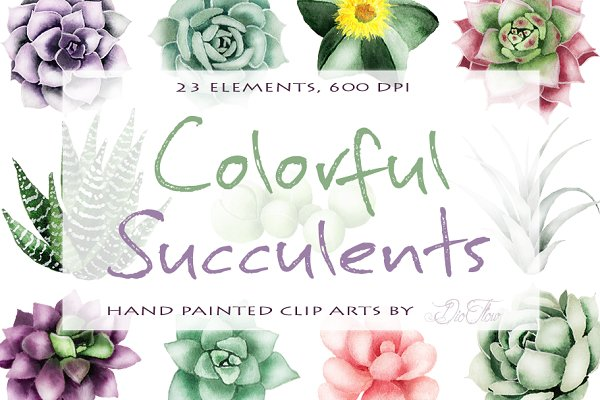 Succulent Watercolor Clipart