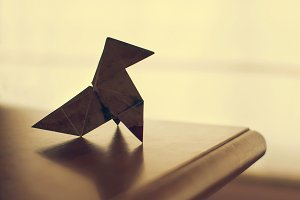 Be origami