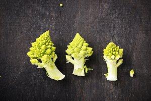 Romanesco broccoli on dark