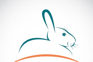 Vector of an rabbit. Pet. Animals.