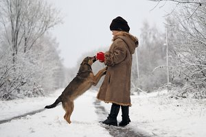 The child plays with the dog. Snow