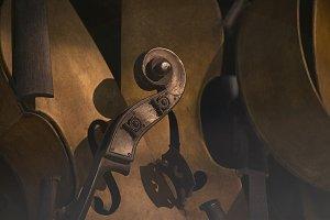 Composition of violins
