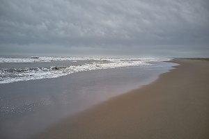 The beach with the cloudy sky