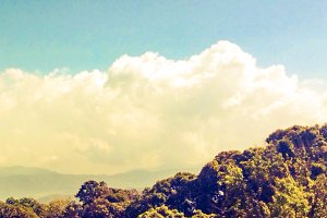 Landscape of sky, tree and mountain