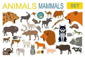 70+Animals icon