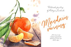 Mandarine watercolor painting