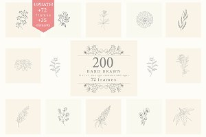 200 Hand Drawn Floral Elements,Frame