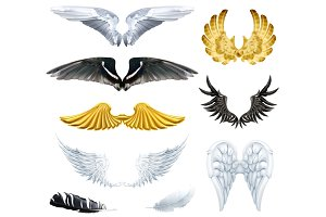 Black, white and gold angels wings